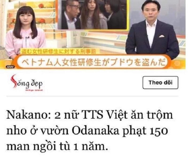 Quá xấu hổ : 2 nữ thực tập sinh người việt ăn trộm nho ở Nhật bị bắt , cắn chủ vườn khi bị phát giác